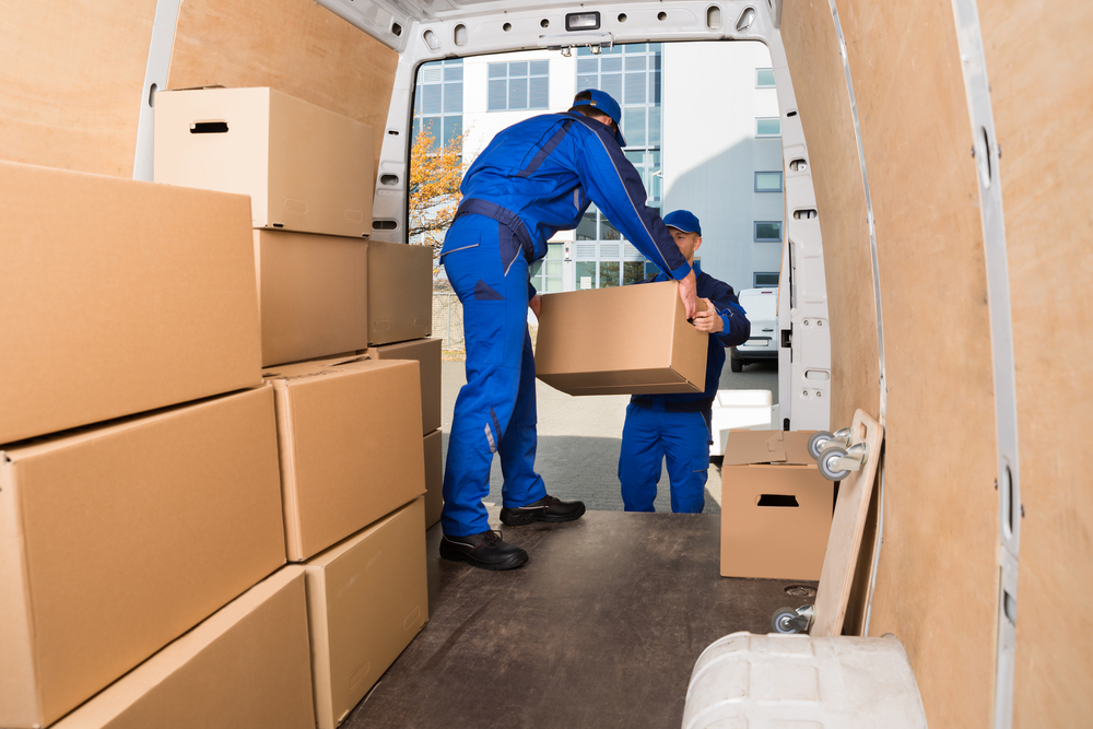 delivery-men-loading-cardboard-boxes-in-ply-lined-van.jpg
